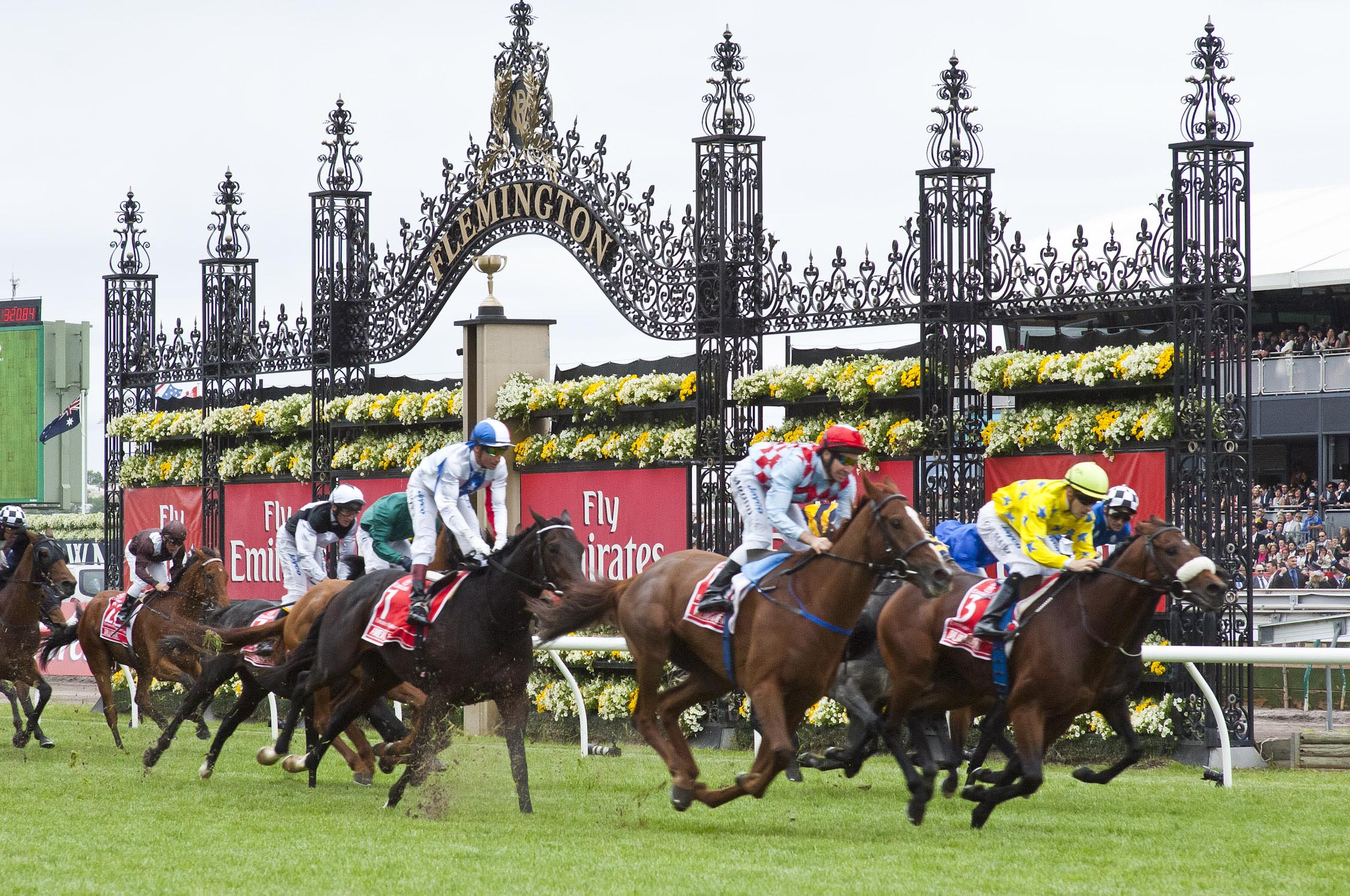 emirates melbourne cup betting odds