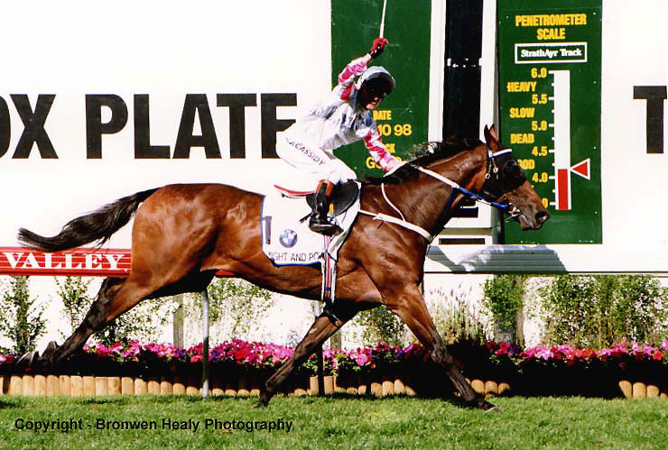 Racing and Breeding Champ Might and Power