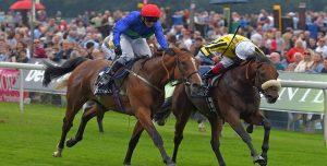 Horse Races in 2018 - Horse Racing Betting Online